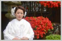 姫路神社は椿も綺麗。