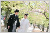 姫路城内の三の丸広場。