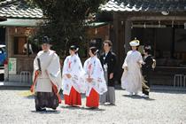 高嶺神社の入場シーン
